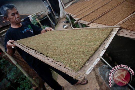 Komnas PT: petani tembakau perlu koperasi