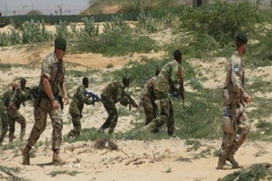 Serangan udara AS di Somalia tewaskan 4 anggota al Shabaab