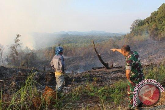 Tujuh desa di Kapuas Hulu rawan karhutla