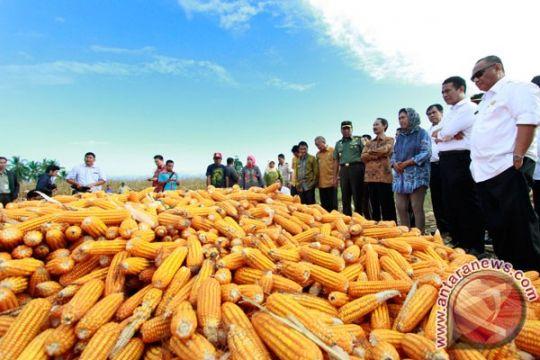 Ombudsman imbau Kementan sosialisasikan kebijakan peningkatan cadangan pangan