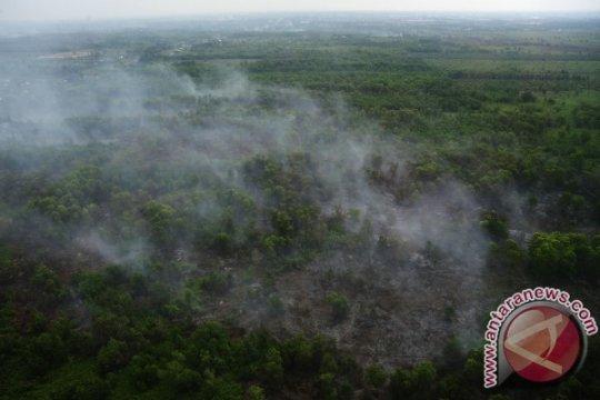 Bupati Kubu Raya minta perusahaan perkebunan ikut tanggulangi karhutla