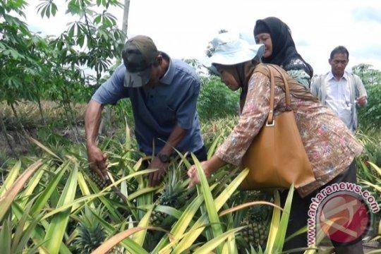 Mantan legislator bidik bisnis agrowisata