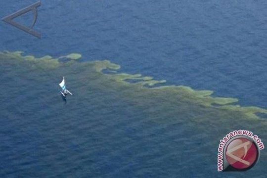Warga Mauritius sumbangkan rambut untuk serap minyak yang cemari laut