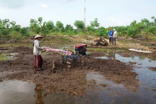 Pertanian tanpa bakar masuk Pembangunan Rendah Karbon Indonesia