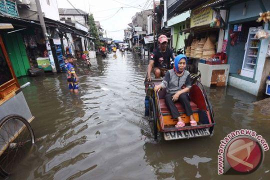 DKI Jakarta segera atur ulang operasi becak
