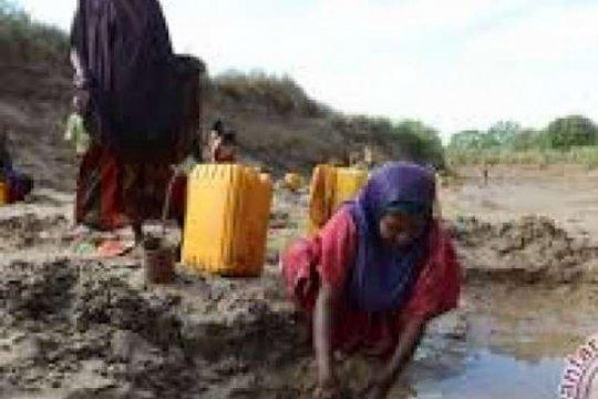 Dua pekerja kemanusiaan dibunuh penyerang di Ethiopia barat