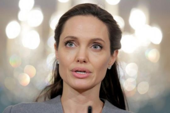 Angelina Jolie kecam kekerasan seksual terhadap perempuan Rohingya