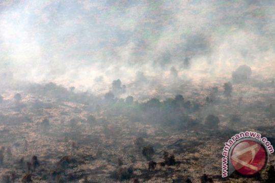 Empat provinsi siaga darurat kebakaran hutan-lahan