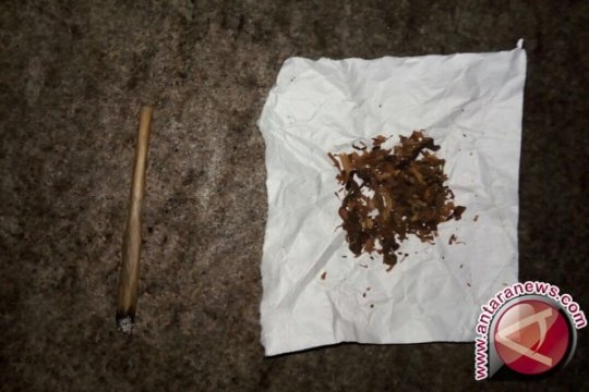 Polisi tes urine oknum mahasiswa pemakai tembakau gorila