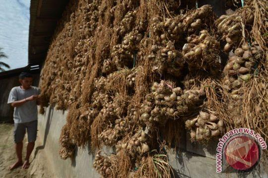 Stok melimpah tekan harga bawang merah di Palu