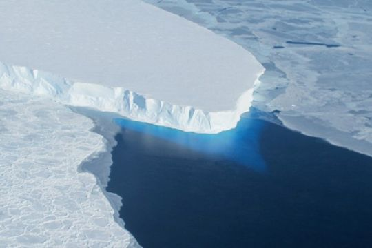 Ada dunia flora-fauna rahasia nan hangat di bawah Antartika