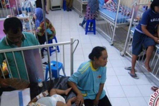 349 warga Pekanbaru terjangkit DBD