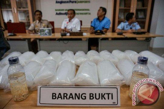 Polairud Lampung gagalkan penyelundupan baby lobster mutiara
