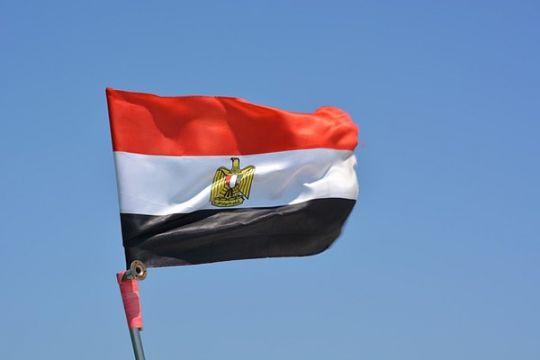 Pengadilan Mesir bebaskan penulis buku menentang ekonomi