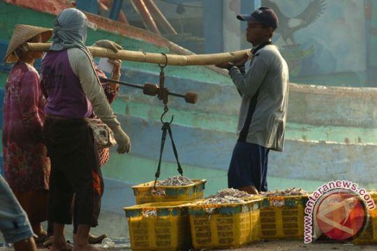 DPRD Sultra dorong pengembangan sektor perikanan tangkap