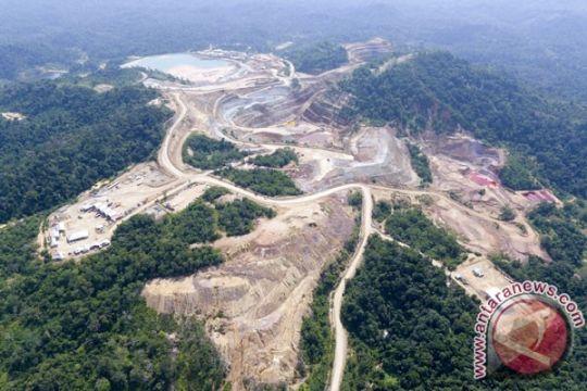 LSM Walhi gugat izin tambang emas Aceh