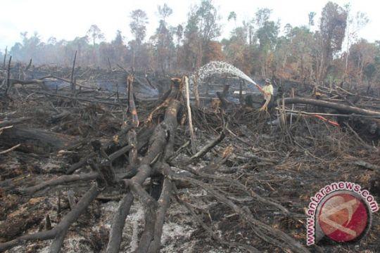 Heli pemadam masih beroperasi di Aceh Barat