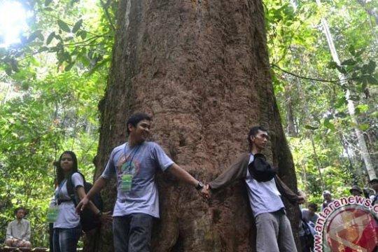 Bupati Kutai Timur dan komunitas lingkungan tanam pohon ulin