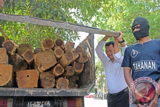 Pengangkut ratusan kayu sono diduga milik Perhutani ditangkap