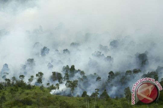 15 helikopter disiagakan cegah kebakaran lahan Sumsel