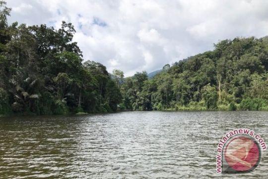 Sumbar siapkan tiga lokasi untuk hutan adat