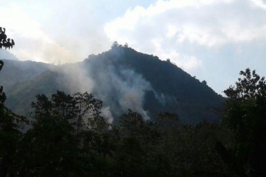 Hutan wisata Gunung Guntur di Garut terbakar
