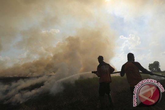 BPBD Sumsel mulai lakukan pemantauan daerah rawan kebakaran hutan