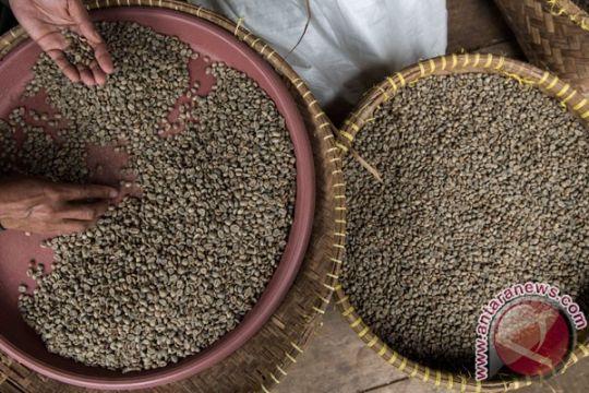Indonesia manfaatkan perubahan gaya hidup remaja China melalui kopi