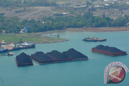 DEN: Pemerintah harus mematok harga batu bara di hulu
