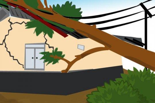 Petugas PPSU tewas saat bertugas evakuasi pohon tumbang