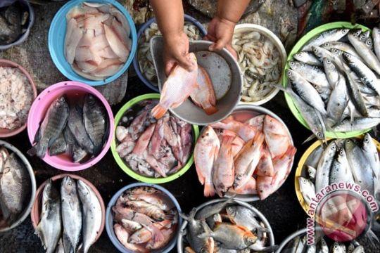 Konsumsi ikan nasional capai 43 persen