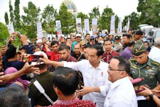 Presiden Jokowi mulai peremajaan kelapa sawit Sumsel