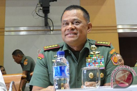 Panglima TNI: Pembebasan sandera di Papua cermin profesional