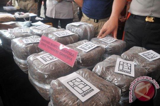 Pengguna narkoba jenis tembakau sintetis divonis penjara