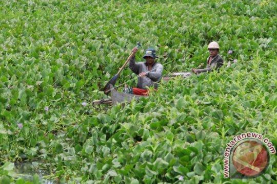 Danau Limboto masuk daftar prioritas nasional