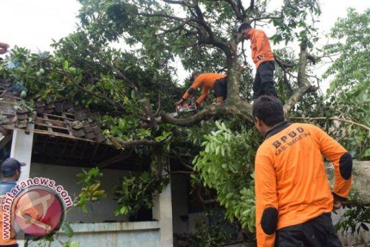 Polisi tangani warga meninggal tertimpa pohon
