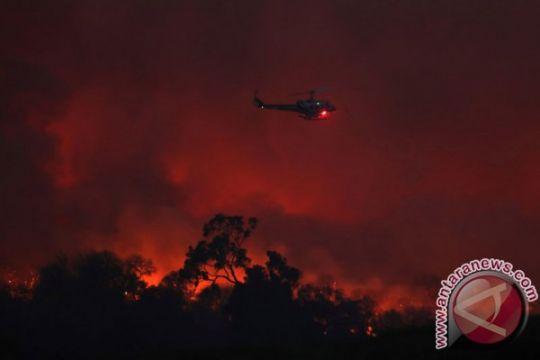 California dalam keadaan darurat karena kebakaran hutan