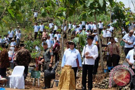 Seruan Jokowi pada Hari Menanam Pohon; pelihara sampai besar