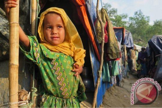 Fadli Zon: ASEAN harus tuntaskan kasus Rohingya