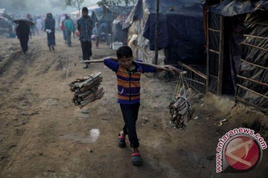 Indonesia perlu dorong ASEAN soal Rohingya