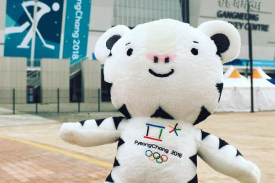 Korut luncurkan selebaran Olimpiade Musim Dingin hingga Seoul