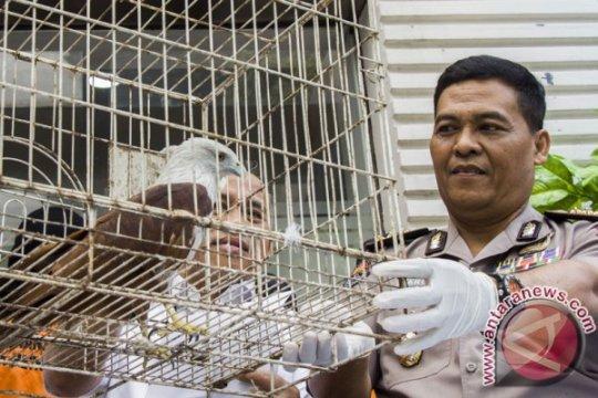 Polisi bantah tuduhan Sam Aliano