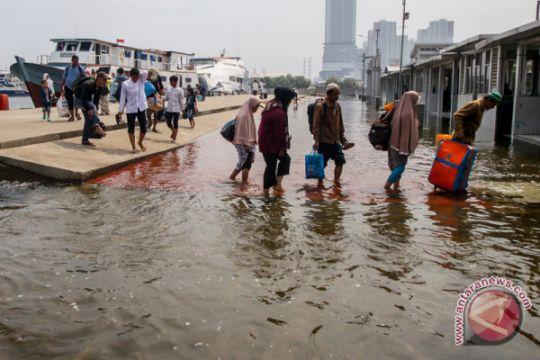 Banjir Rob Muara Angke