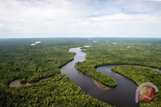 KLHK sebut bioenergi berbasis hutan potensial dikembangkan