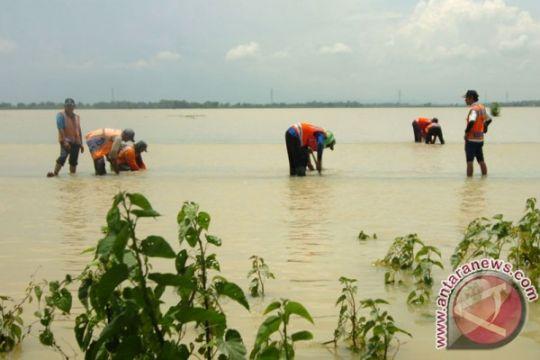 KAI: Banjir ganggu perjalanan kereta