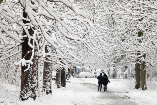 Longsoran salju tewaskan dua peseluncur Spanyol di Prancis