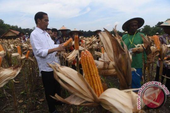 Saat Jokowi interupsi cerita ibu petani yang memujinya