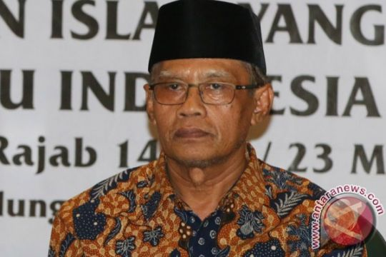 Muhammadiyah : Dunia akui kiprah Indonesia di internasional