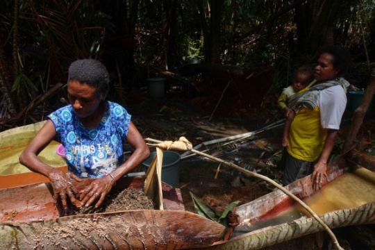 Melihat proses pengolahan sagu di Kampung Sira (foto dan video)