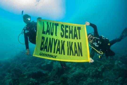 Jangkar kapal wisata bahayakan terumbu karang Raja Ampat